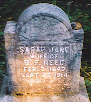 REED, SARAH JANE - Bedford County, Tennessee | SARAH JANE REED - Tennessee Gravestone Photos
