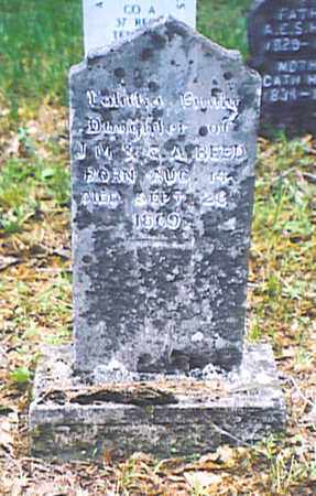 REED, TALIITHA EMILY - Bedford County, Tennessee | TALIITHA EMILY REED - Tennessee Gravestone Photos