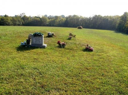 *RUCKER OVERVIEW,  - Bedford County, Tennessee |  *RUCKER OVERVIEW - Tennessee Gravestone Photos