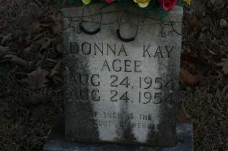 AGEE, DONNA KAY - Bledsoe County, Tennessee | DONNA KAY AGEE - Tennessee Gravestone Photos