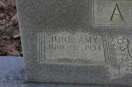 AGEE, JUNE AMY - Bledsoe County, Tennessee | JUNE AMY AGEE - Tennessee Gravestone Photos