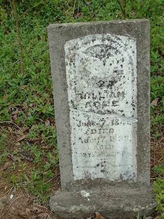 AGEE, WILLIAM - Bledsoe County, Tennessee | WILLIAM AGEE - Tennessee Gravestone Photos