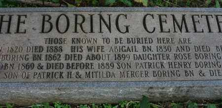 BORING, ABIGAIL - Bledsoe County, Tennessee | ABIGAIL BORING - Tennessee Gravestone Photos