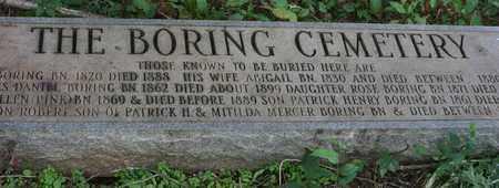 BORING, JOHN H. - Bledsoe County, Tennessee | JOHN H. BORING - Tennessee Gravestone Photos