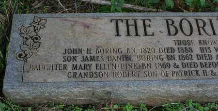BORING, MARY ELLEN (PINK) - Bledsoe County, Tennessee | MARY ELLEN (PINK) BORING - Tennessee Gravestone Photos