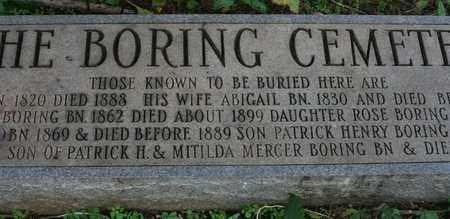 BORING, ROBERT - Bledsoe County, Tennessee   ROBERT BORING - Tennessee Gravestone Photos