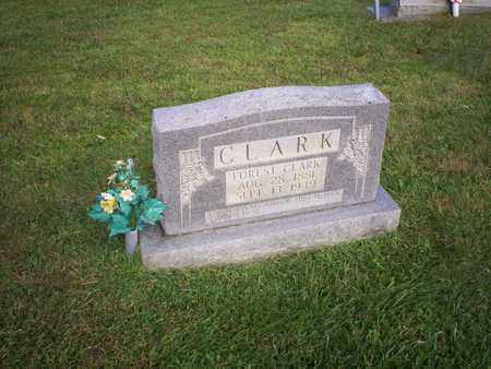 CLARK, FOREST - Bledsoe County, Tennessee | FOREST CLARK - Tennessee Gravestone Photos