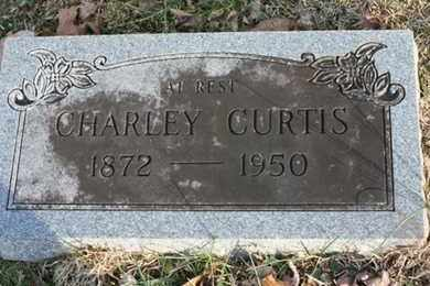 CURTIS, CHARLIE - Bledsoe County, Tennessee | CHARLIE CURTIS - Tennessee Gravestone Photos