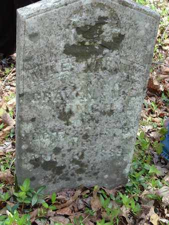 HINCH, MIKE - Bledsoe County, Tennessee | MIKE HINCH - Tennessee Gravestone Photos