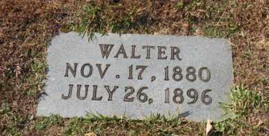 JOHNSON, WALTER - Bledsoe County, Tennessee | WALTER JOHNSON - Tennessee Gravestone Photos