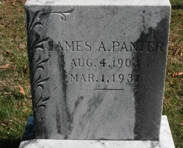 PANTER, JAMES A. - Bledsoe County, Tennessee | JAMES A. PANTER - Tennessee Gravestone Photos
