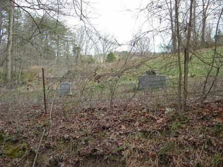 PUTNAM, LILLIE - Bledsoe County, Tennessee | LILLIE PUTNAM - Tennessee Gravestone Photos