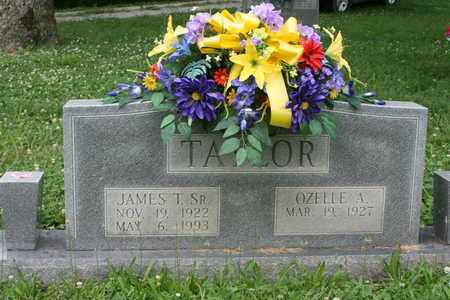 TAYLOR, JAMES T. SR - Bledsoe County, Tennessee | JAMES T. SR TAYLOR - Tennessee Gravestone Photos