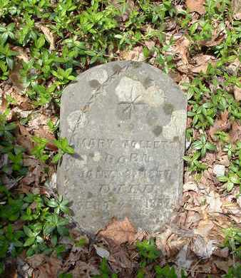TOLLETT, MARY - Bledsoe County, Tennessee | MARY TOLLETT - Tennessee Gravestone Photos