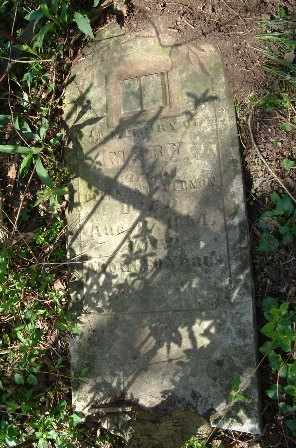 VERNON, MARY - Bledsoe County, Tennessee | MARY VERNON - Tennessee Gravestone Photos