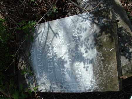 VERNON, OCTAVIA P. - Bledsoe County, Tennessee | OCTAVIA P. VERNON - Tennessee Gravestone Photos