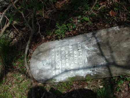 VERNON, PLEASANT PRESTON - Bledsoe County, Tennessee   PLEASANT PRESTON VERNON - Tennessee Gravestone Photos