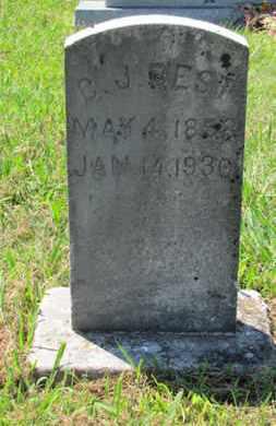 BEST, C J - Blount County, Tennessee | C J BEST - Tennessee Gravestone Photos