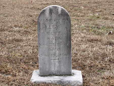BEST, POLLEY A. - Blount County, Tennessee | POLLEY A. BEST - Tennessee Gravestone Photos
