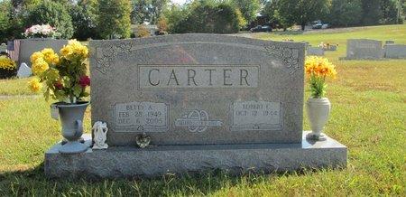 CARTER, BETTY ANN - Blount County, Tennessee | BETTY ANN CARTER - Tennessee Gravestone Photos