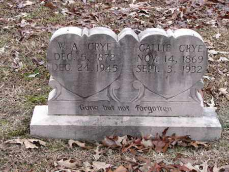 CRYE, WILLIAM ALEXANDER - Blount County, Tennessee | WILLIAM ALEXANDER CRYE - Tennessee Gravestone Photos