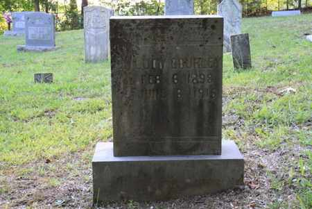 GOURLEY, LUCY - Blount County, Tennessee | LUCY GOURLEY - Tennessee Gravestone Photos