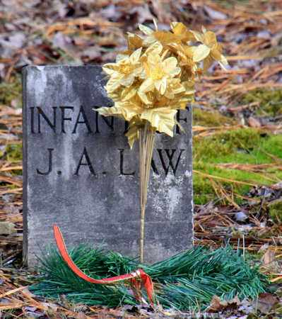 LAW, INFANT - Blount County, Tennessee | INFANT LAW - Tennessee Gravestone Photos