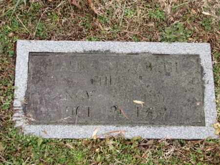 PHELPS, LAURA ELIZABETH - Blount County, Tennessee | LAURA ELIZABETH PHELPS - Tennessee Gravestone Photos