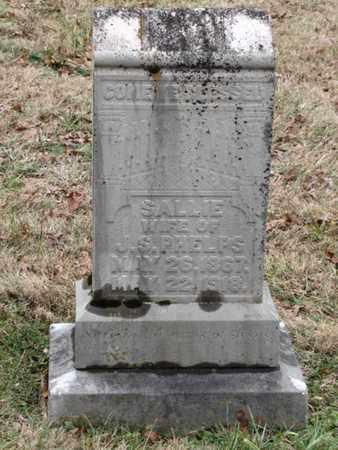 PHELPS, SALLIE - Blount County, Tennessee | SALLIE PHELPS - Tennessee Gravestone Photos