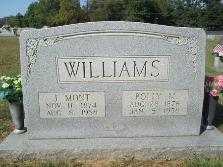 WILLIAMS, J MONT - Blount County, Tennessee | J MONT WILLIAMS - Tennessee Gravestone Photos
