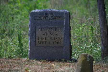 WILSON, ALEXANDER - Blount County, Tennessee   ALEXANDER WILSON - Tennessee Gravestone Photos