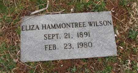WILSON, ELIZA - Blount County, Tennessee   ELIZA WILSON - Tennessee Gravestone Photos