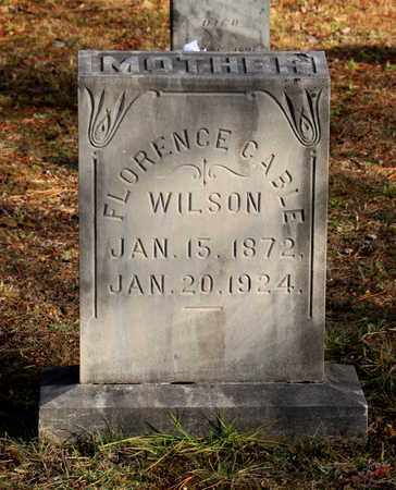WILSON, FLORENCE - Blount County, Tennessee | FLORENCE WILSON - Tennessee Gravestone Photos