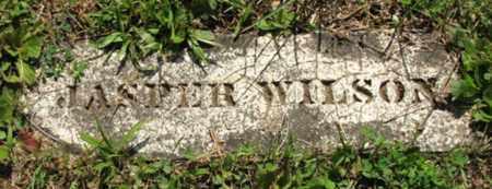 WILSON, JASPER - Blount County, Tennessee | JASPER WILSON - Tennessee Gravestone Photos