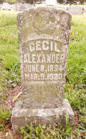ALEXANDER(OLD STONE), CECIL F. - Bradley County, Tennessee   CECIL F. ALEXANDER(OLD STONE) - Tennessee Gravestone Photos