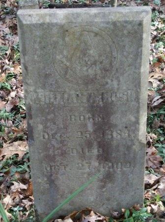 BUSH, WILLIAM A. - Bradley County, Tennessee | WILLIAM A. BUSH - Tennessee Gravestone Photos