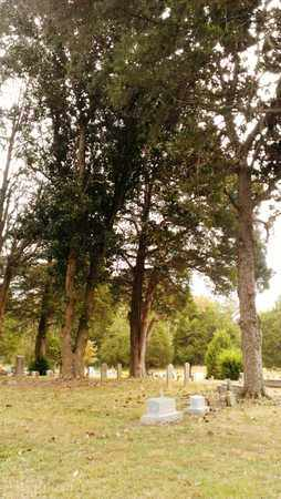 *CANDIES CREEK CEMETERY,  - Bradley County, Tennessee    *CANDIES CREEK CEMETERY - Tennessee Gravestone Photos