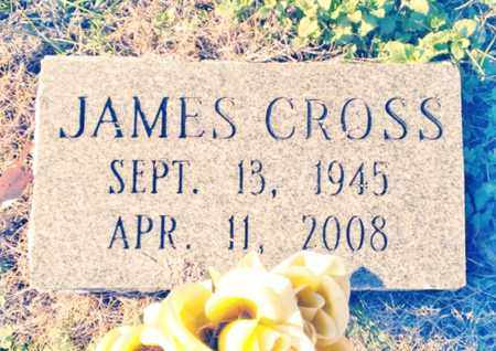 CROSS, JAMES - Bradley County, Tennessee | JAMES CROSS - Tennessee Gravestone Photos
