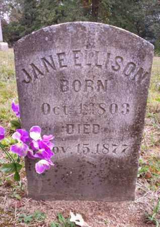 CASEY ELLISON, JANE - Bradley County, Tennessee   JANE CASEY ELLISON - Tennessee Gravestone Photos