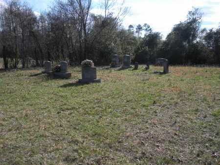 *ALVIS MCCARTY CEMETERY, OVERVIEW - Campbell County, Tennessee | OVERVIEW *ALVIS MCCARTY CEMETERY - Tennessee Gravestone Photos