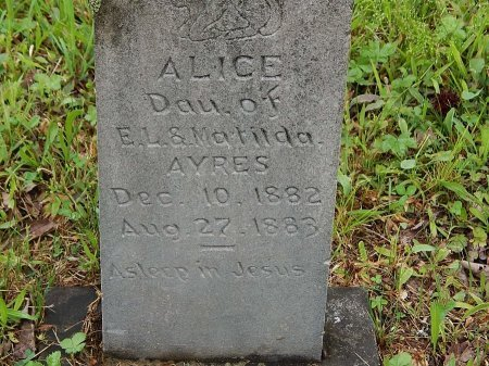 AYERS, ALICE  - Campbell County, Tennessee | ALICE  AYERS - Tennessee Gravestone Photos