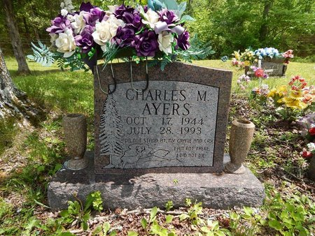 AYERS, CHARLES M - Campbell County, Tennessee | CHARLES M AYERS - Tennessee Gravestone Photos