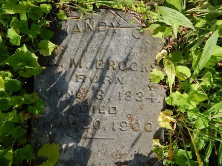 BROOKS, MANDY C - Campbell County, Tennessee   MANDY C BROOKS - Tennessee Gravestone Photos