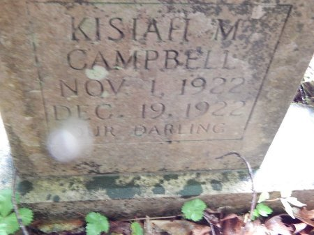 CAMPBELL, KISIAH M - Campbell County, Tennessee | KISIAH M CAMPBELL - Tennessee Gravestone Photos