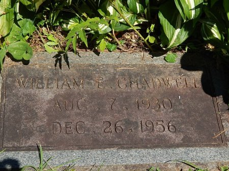 CHADWELL, WILLIAM E - Campbell County, Tennessee | WILLIAM E CHADWELL - Tennessee Gravestone Photos