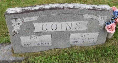 GOINS, LIZZIE S - Campbell County, Tennessee | LIZZIE S GOINS - Tennessee Gravestone Photos