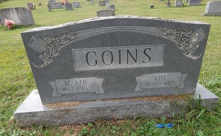 GOINS, ROY - Campbell County, Tennessee | ROY GOINS - Tennessee Gravestone Photos