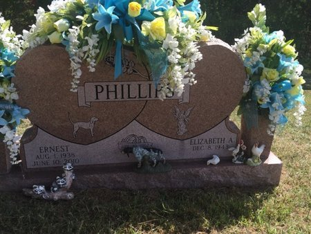 PHILLIPS, ERNEST - Campbell County, Tennessee | ERNEST PHILLIPS - Tennessee Gravestone Photos