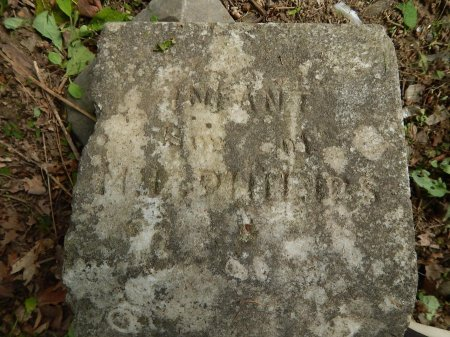 PHILLIPS, INFANT - Campbell County, Tennessee | INFANT PHILLIPS - Tennessee Gravestone Photos
