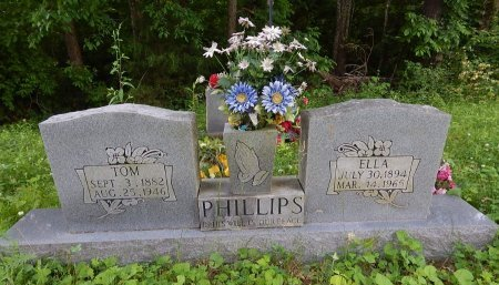 PHILLIPS, TOM - Campbell County, Tennessee | TOM PHILLIPS - Tennessee Gravestone Photos